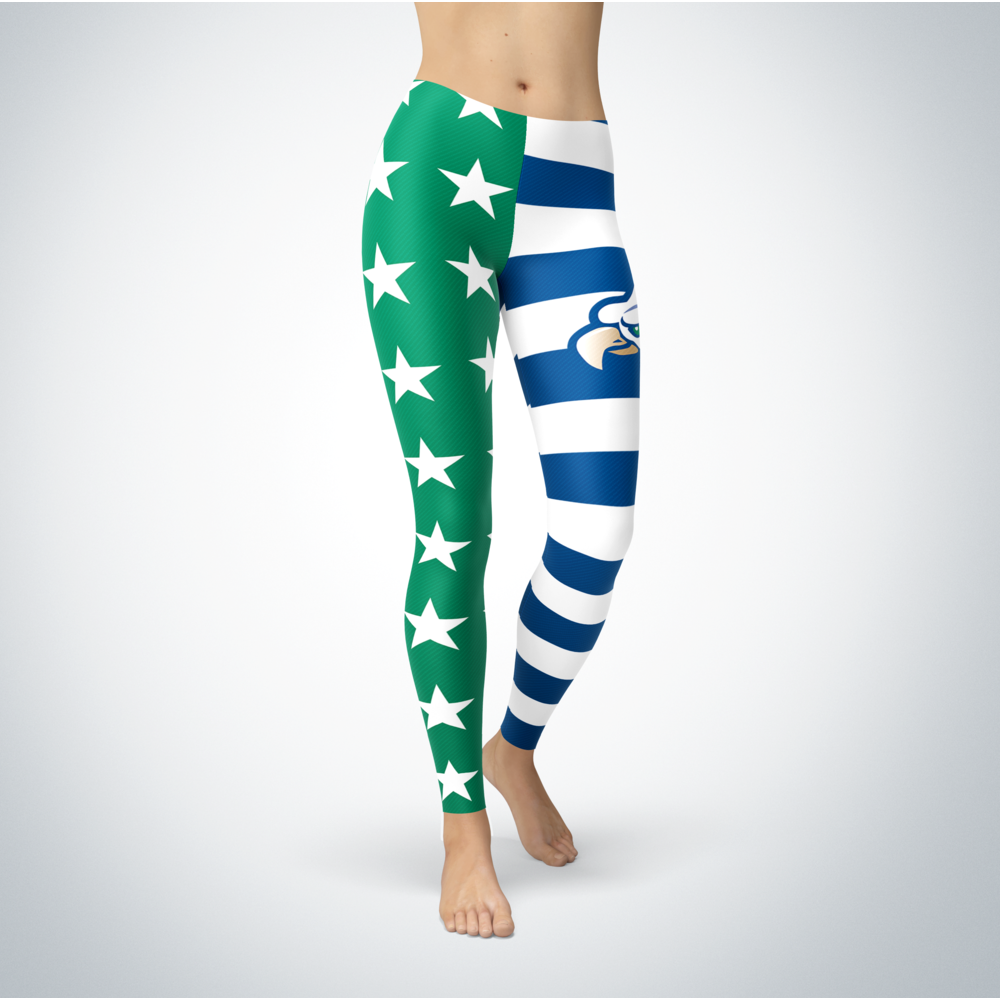 Star And Stripes - Florida Gulf Coast Eagles Front picture